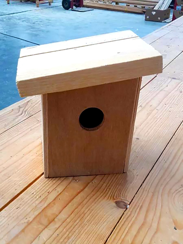 timmerbouwpakket vogelhuisje pimpelmees