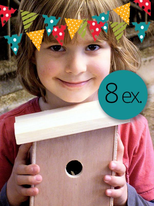 verjaardagsfeest timmerbouwpakket vogelhuisje pimpelmees