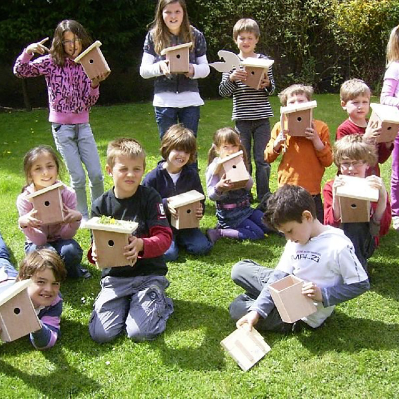 Vogeltimmerfeest voor basisscholen