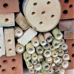 teamuitje insectenhotel bouwen