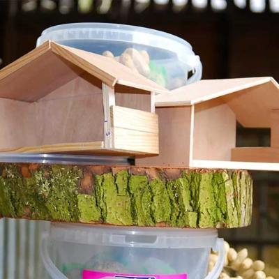 voederhuisje roodborst bouwpakket