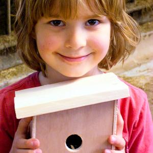 workshop vogelhuisje timmeren